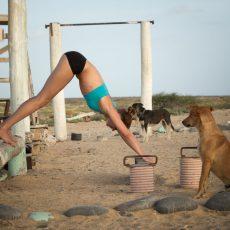 De Yoga Experience